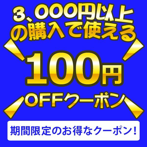 3,000円以上の購入で使える100円引きクーポン!