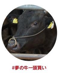 夢の牛一頭買い