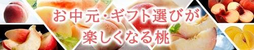 旬の桃コーナー