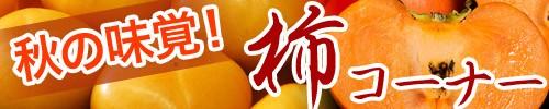 旬の柿コーナー