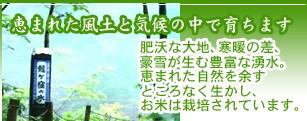 恵まれた風土と気候の中で育ちます 肥沃な大地、寒暖の差、豪雪が生む豊富な湧水。恵まれた自然を余すところなく生かし、お米は栽培されています。