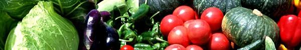 果物・野菜乾燥器 からりんこ