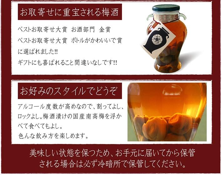 梅酒 小鼓 プラムトニック梅申 1500ml 商品説明