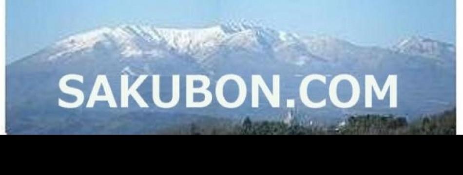 sakubon.com