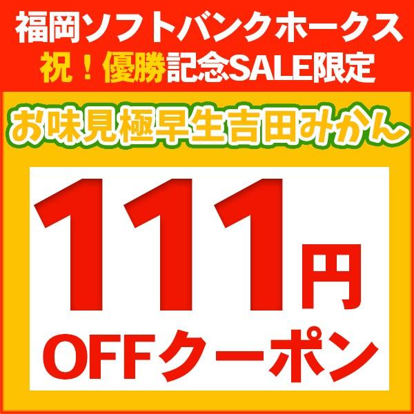 お味見極早生吉田みかん111円OFFクーポン