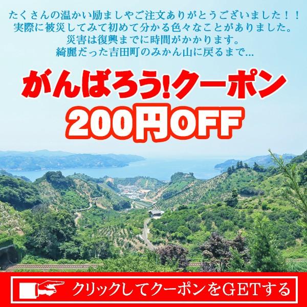 がんばろう!クーポン200円OFF