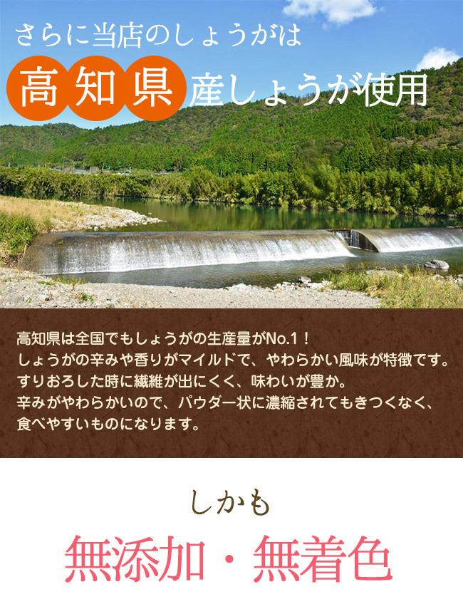 高知県のしょうが