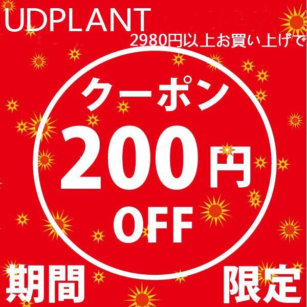 全品対象!最安値級のプライスから更に200円オフ!