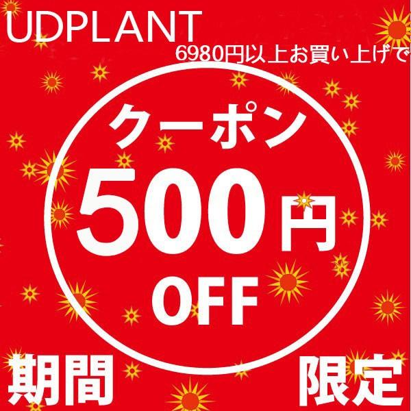 全品対象!最安値級のプライスから更に500円オフ!