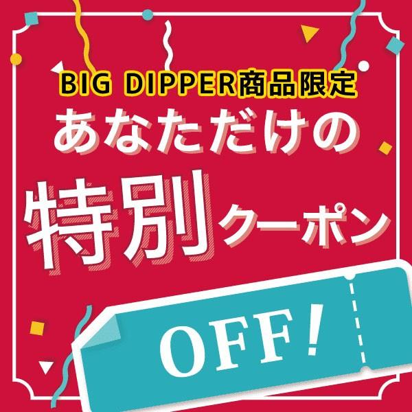 ◎ BIGDIPPER限定 100円OFFクーポン ◎