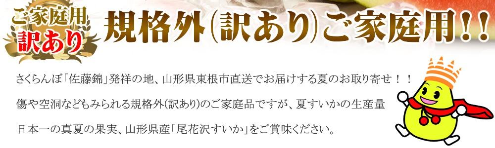 山形県産 尾花沢すいか