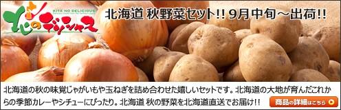 北海道 秋野菜セット 北のデリシャス