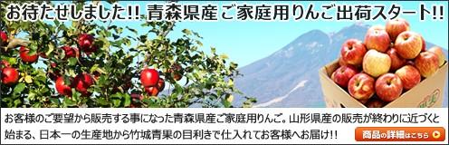 青森県産 サンふじ りんご