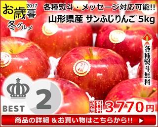 【送料無料】山形産 特秀品 サンふじリンゴ 約5kg(約14玉〜18玉入り)