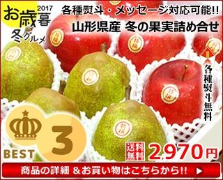 【送料無料】山形産 特秀品 サンふじリンゴ 約10kg(約28玉〜36玉入り)
