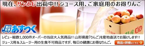 山形県産 ご家庭用 りんご ジュース用