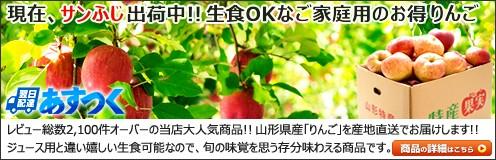 山形県産 ご家庭用 りんご 生食用