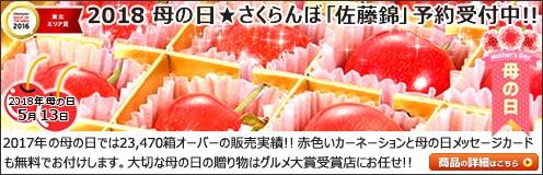 母の日プレゼント 山形県産 さくらんぼ 佐藤錦 (秀品 Lサイズ 24粒入り )