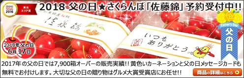 父の日ギフト さくらんぼ 佐藤錦 (山形県産/秀品/Mサイズ/700g入り)
