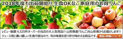 山形県産 ご家庭用 りんご