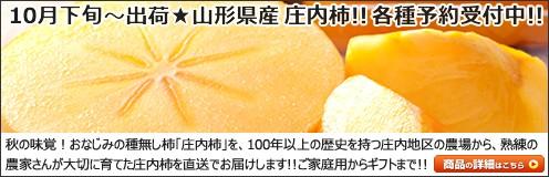 山形県産  柿 庄内柿