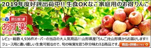 山形県産 りんご サンふじ(訳あり)