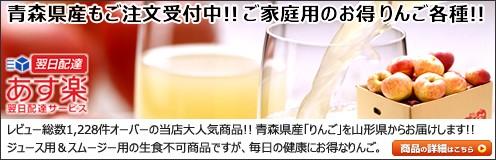 青森県産 りんご サンふじ(訳あり)