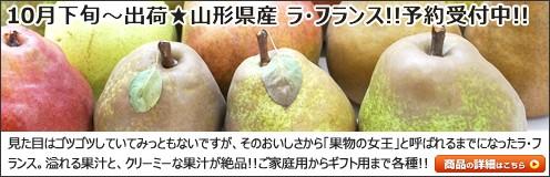 山形県産 洋梨
