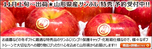 山形県産 りんご 特秀品