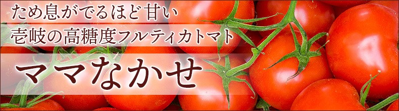 壱岐の潮風 高糖度トマト ままなかせ