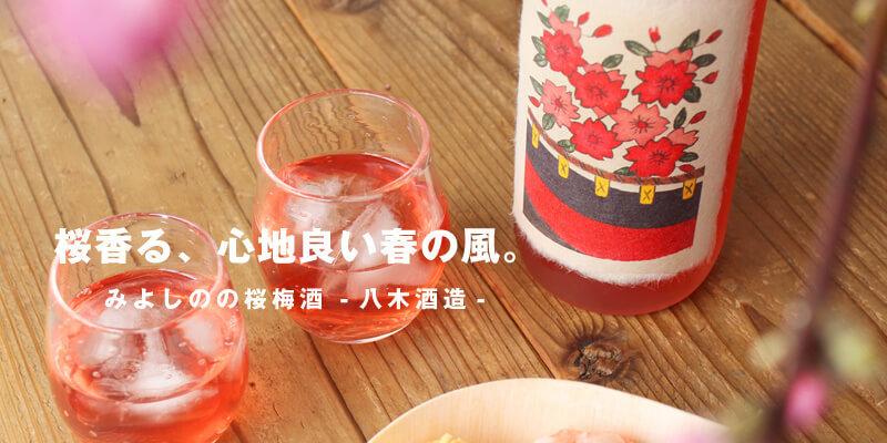 みよしのの桜梅酒 720ml [八木酒造]