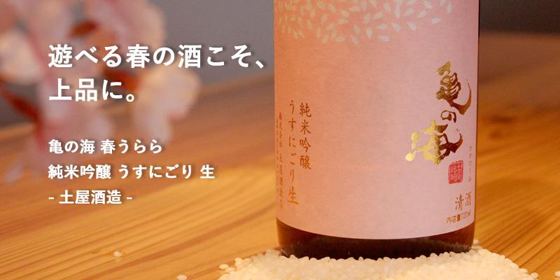 亀の海 春うらら 純米吟醸 うすにごり 生 720ml [土屋酒造店]