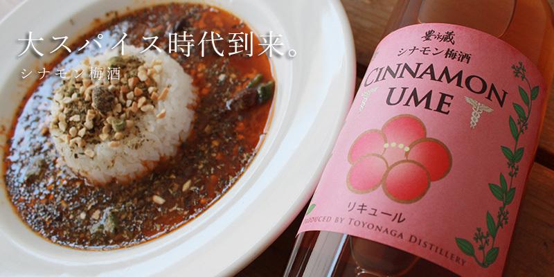 シナモン梅酒 CINNAMONUME 700ml 【豊永酒造/熊本県】 【焼酎】
