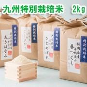 九州の特別栽培米