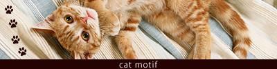 猫ジュエリー特集
