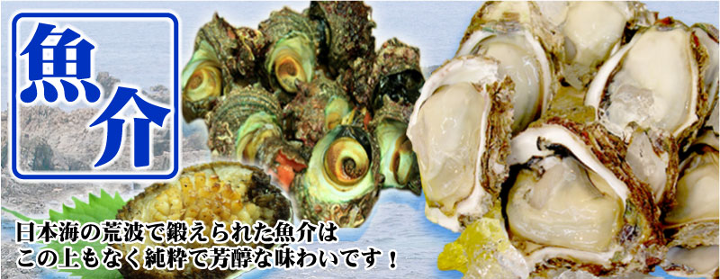 魚介類 岩牡蠣 あわび さざえ