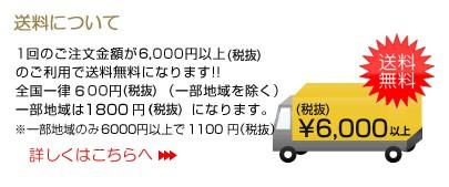 送料について 5250円以上で送料無料!