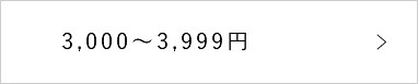 3000~3999円