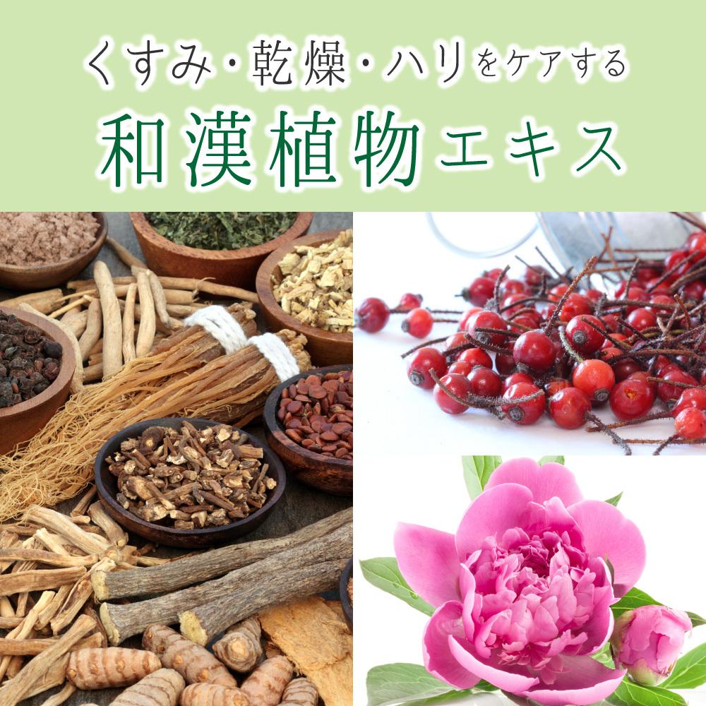 くすみ、乾燥、ハリをケアする和漢植物エキス