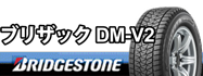 ブリザックDM-V2