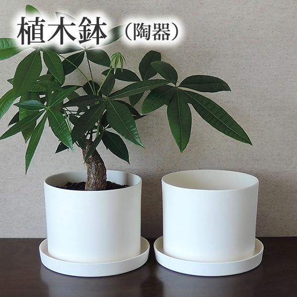 白い陶器の植木鉢、ずんどうタイプ