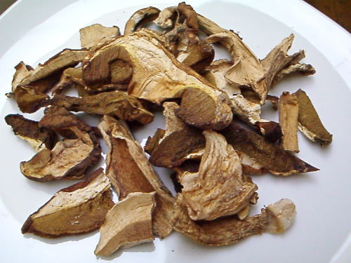 乾燥ポルチーニ茸
