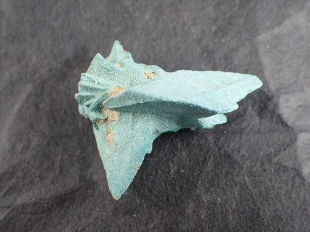 グローベライト(炭酸カルシウム) Yavapai County Arizona USA 産
