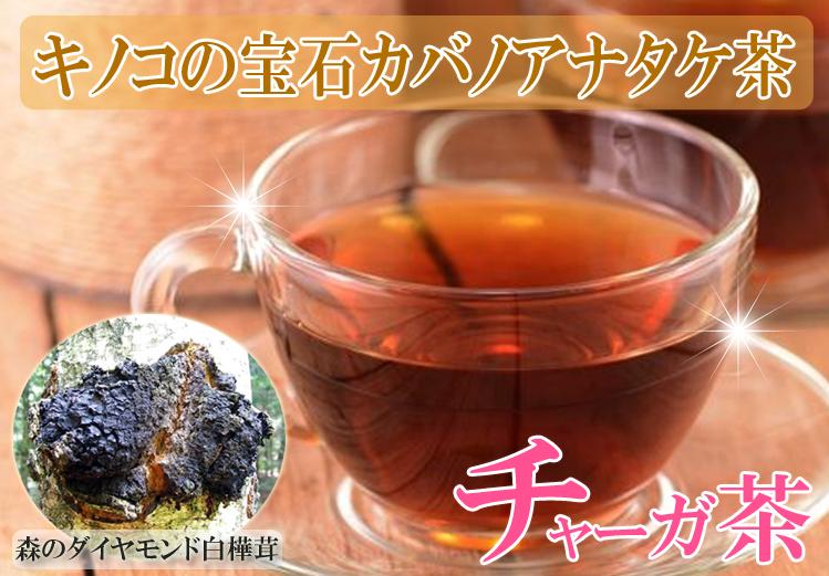 チャーガ茶 カバノアナタケ茶 免疫アップ アンチエイジング 美肌効果 chaga