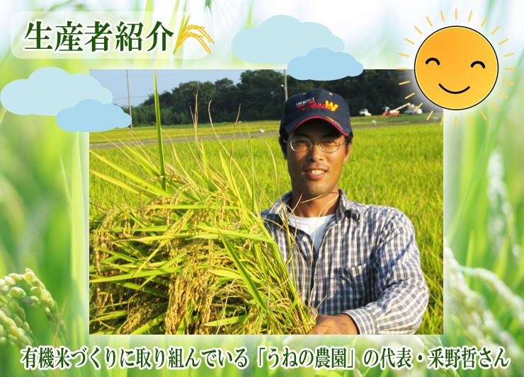 有機JAS認証米粉100%使用 オーガニック 滋賀県産 無農薬