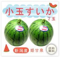 小玉すいか 無農薬 野菜 自然食品 東京