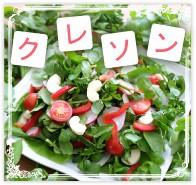 クレソン 無農薬 野菜 自然食品 東京