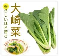 大崎菜 無農薬 野菜 自然食品 東京