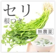 セリ 無農薬 野菜 自然食品 東京