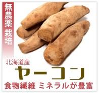 ヤーコン 無農薬 野菜 自然食品 東京